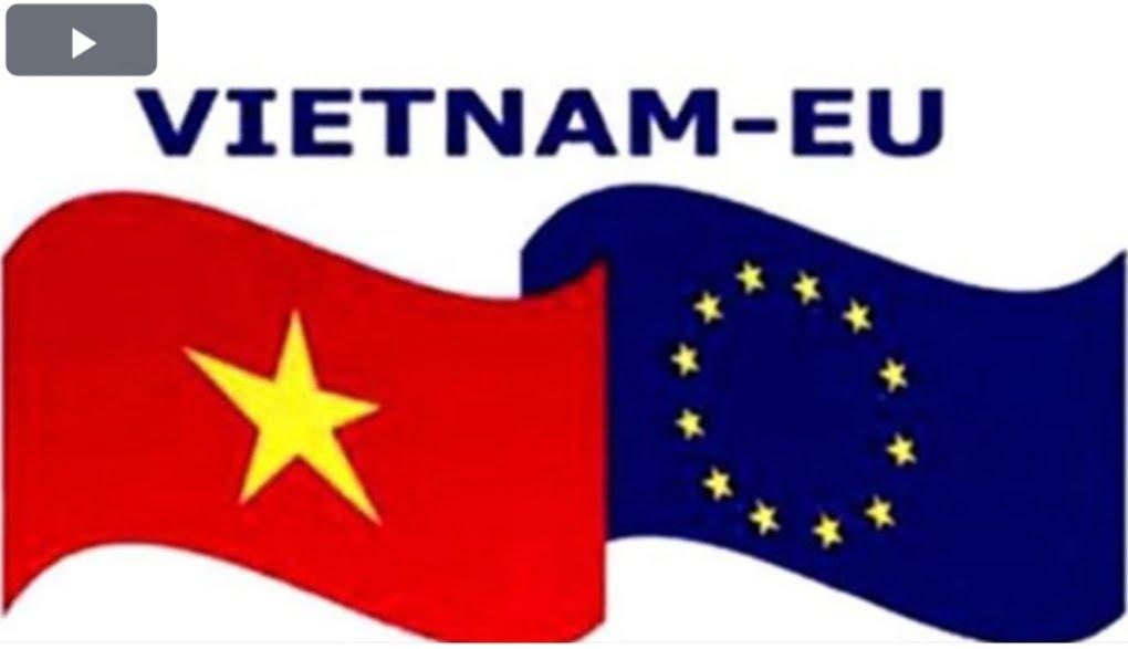 (Tiếng Việt) GIỚI THIỆU CHUNG VỀ HIỆP ĐỊNH EVFTA VÀ IPA